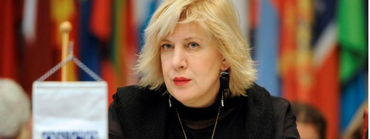 OSCE: Media situation in Turkey 'terrifying'